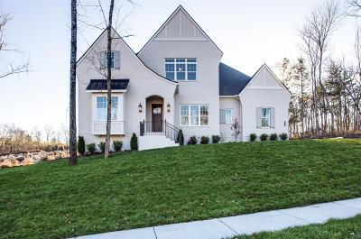 Nolensville Single Family Home For Sale: 449 Oldenburg Rd