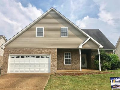 Spring Hill  Single Family Home For Sale: 1017 Golf View Way