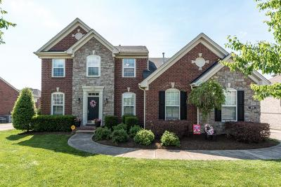 Hendersonville Single Family Home For Sale: 1018 Avery Trace Cir