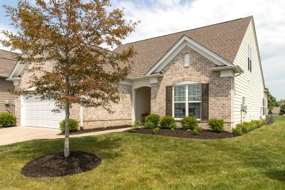 Mount Juliet Single Family Home For Sale: 207 Sutler Place
