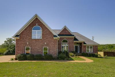 Mount Juliet Single Family Home For Sale: 206 Ridgeview Preserve Dr