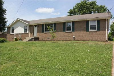 Hendersonville Single Family Home Active - Showing: 135 Scotch St