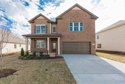 Smyrna Single Family Home Under Contract - Showing: 4301 Winslet Drive #735
