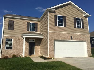 Clarksville Single Family Home For Sale: 233 Autumn Terrace - Lot 236