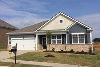 Spring Hill Single Family Home Under Contract - Not Showing: 8040 Forest Hills Drive, #340