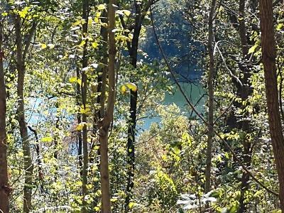 Residential Lots & Land For Sale: 96 Blackberry Ridge Way