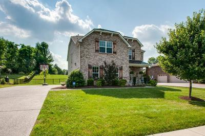 Hendersonville Single Family Home For Sale: 149 Sandpiper Cir