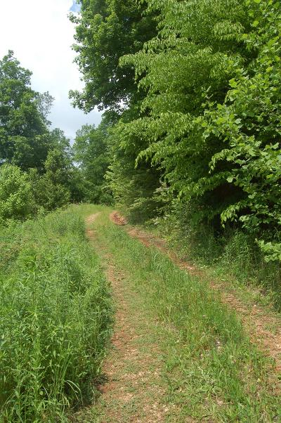 Goodlettsville Residential Lots & Land Active Under Contract: Smiley Hollow Rd