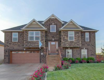 Clarksville Single Family Home Active - Showing: 1025 Henry Place Blvd