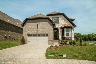 Hendersonville Single Family Home Active - Showing: 1006 Ramble Run
