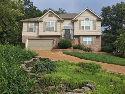Mount Juliet Single Family Home Active - Showing: 1611 Eagle Trace Drive