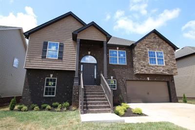 Clarksville Single Family Home For Sale: 122 Summerfield