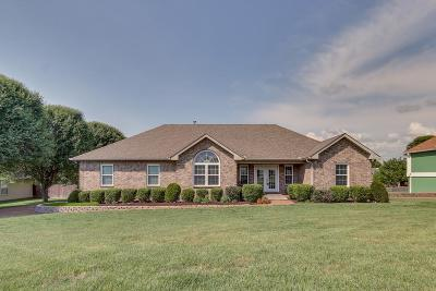 Spring Hill Single Family Home For Sale: 1213 Hunters Point Ln