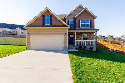 Clarksville Single Family Home For Sale: 156 Rossview Pl