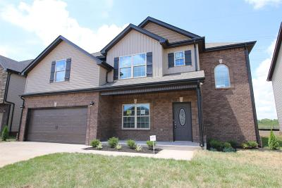 Montgomery County Single Family Home For Sale: 123 Summerfield