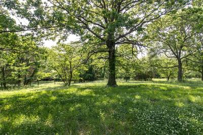 Williamson County Residential Lots & Land For Sale: 2837 Sanford Rd
