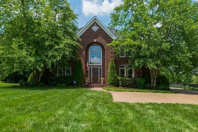 Nashville Single Family Home For Sale: 905 N Meadow Ln