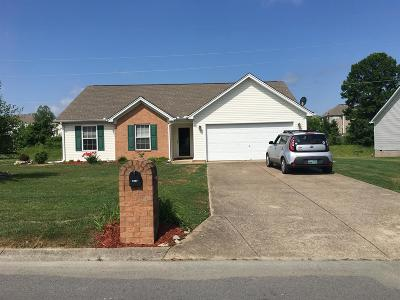 Spring Hill  Single Family Home For Sale: 1861 Portview Dr