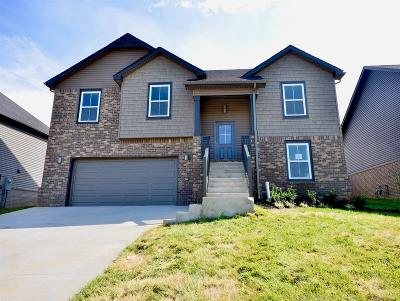 Montgomery County Single Family Home For Sale: 70 Eagles Landing