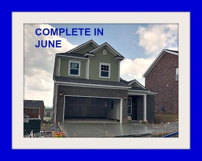Gallatin Single Family Home Active - Showing: 292 Black Thorn Lane #158