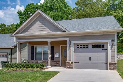 Dickson Single Family Home Active - Showing: 117 Caraway Court