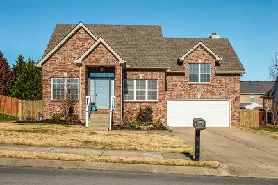Spring Hill Single Family Home For Sale: 1303 Chapmans Retreat Dr