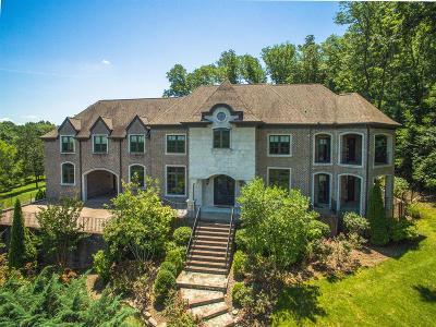 Brentwood, Fairview, Franklin, Nashville, Spring Hill, Thompson's Station, Thompsons Station Single Family Home For Sale: 1939 Bristol Ct