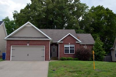 Clarksville Single Family Home Active - Showing: 580 Parkvue Village Way