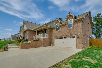 Spring Hill Single Family Home For Sale: 1030 Neeleys Bnd