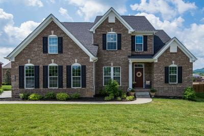 Williamson County Single Family Home For Sale: 2329 Orchard St