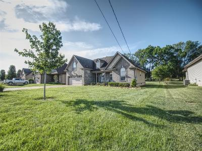 Mount Juliet Single Family Home Active - Showing: 204 Glade Dr