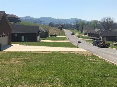 Woodbury Residential Lots & Land Active - Showing: Rushcreek Court