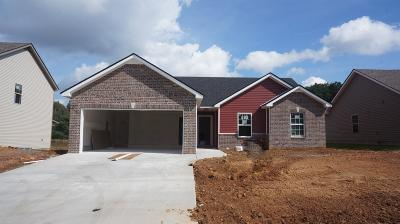 Clarksville Single Family Home Active - Showing: 31 Ridgeland Estates