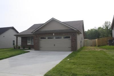 Clarksville Single Family Home Active - Showing: 26 Ridgeland Estates