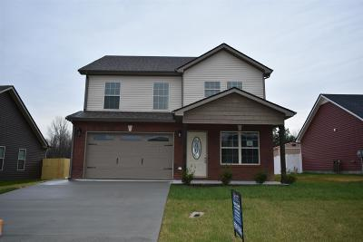 Clarksville Single Family Home Active - Showing: 30 Ridgeland Estates