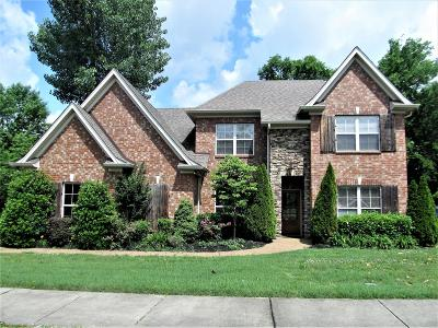 Hendersonville Single Family Home Active - Showing: 146 Saranac Trl