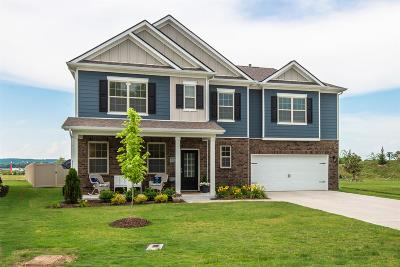 Murfreesboro Single Family Home Active - Showing: 6326 Birchtree Dr