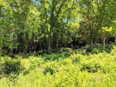 Nashville Residential Lots & Land Active - Showing: 251 Tulip Hill Dr