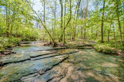 Bon Aqua, Burns, Charlotte, Cumberland Furnace, Dickson, Lyles, Vanleer, White Bluff Residential Lots & Land For Sale: 4081 Highway 96