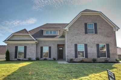 Single Family Home Active - Showing: 2415 Tin Cup Dr - #91