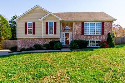 Clarksville TN Single Family Home Active - Showing: $214,900