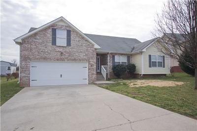 Clarksville TN Single Family Home Active - Showing: $215,000