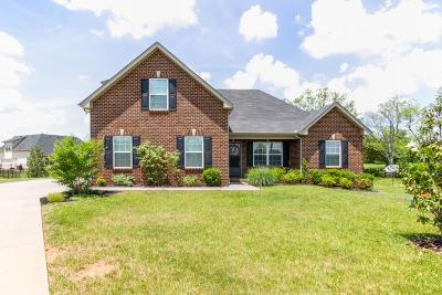 Murfreesboro Single Family Home Active - Showing: 4202 Ruston Ct