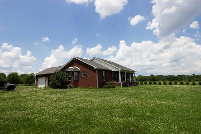 Smithville TN Single Family Home Active - Showing: $325,000