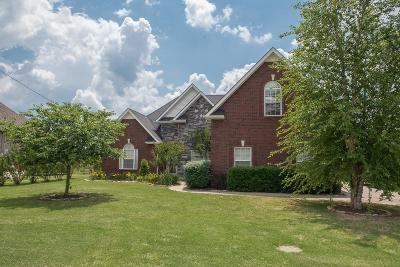 Murfreesboro Single Family Home Active - Showing: 1121 Cascade Falls Drive