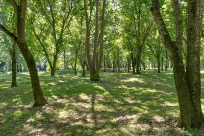 Waynesboro Residential Lots & Land For Sale: 3 Buffalo Riv