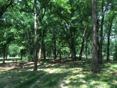 Waynesboro Residential Lots & Land For Sale: 5 Buffalo Riv