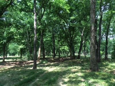 Residential Lots & Land Active - Showing: 13 Buffalo Riv