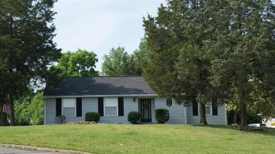 Hendersonville Single Family Home Active - Showing: 233 Savely Dr