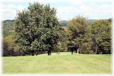 Goodlettsville Residential Lots & Land Under Contract - Showing: 1009 12 Stones Ct